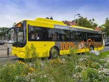 Bussen omgeleid bij Leidsche Rijn Centrum vanwege bouwwerkzaamheden