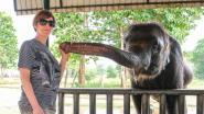 Hannelore (42) werkt bij de Oost-Vlaamse noodcentrale 101, maar in haar vrije tijd helpt ze olifantjes redden in Afrika en Azië