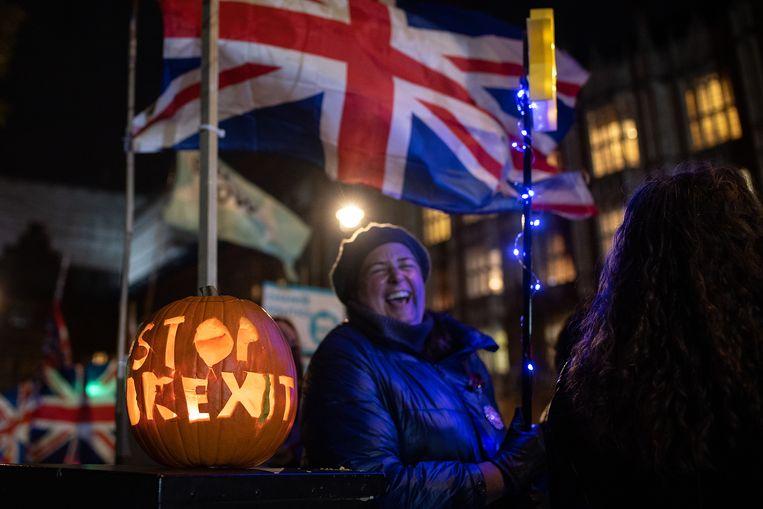 Anti-Brexit-activisten bij het Britse parlement. Beeld null