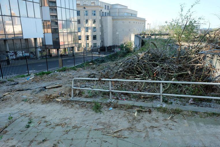 Enkele bomen zijn al gekapt.