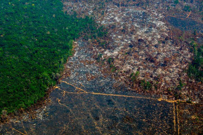 Photo d'archive prise le 28 août 2019 montrant une vue aérienne de la déforestation dans la réserve biologique de Nascentes da Serra do Cachimbo à Altamira, dans l'État de Para, au Brésil, dans le bassin de l'Amazone.