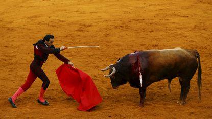 Betekent dit de doodsteek voor het stierenvechten?
