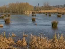 Natuurlijk Brabant!: 'Vierde bergboezem verpest'