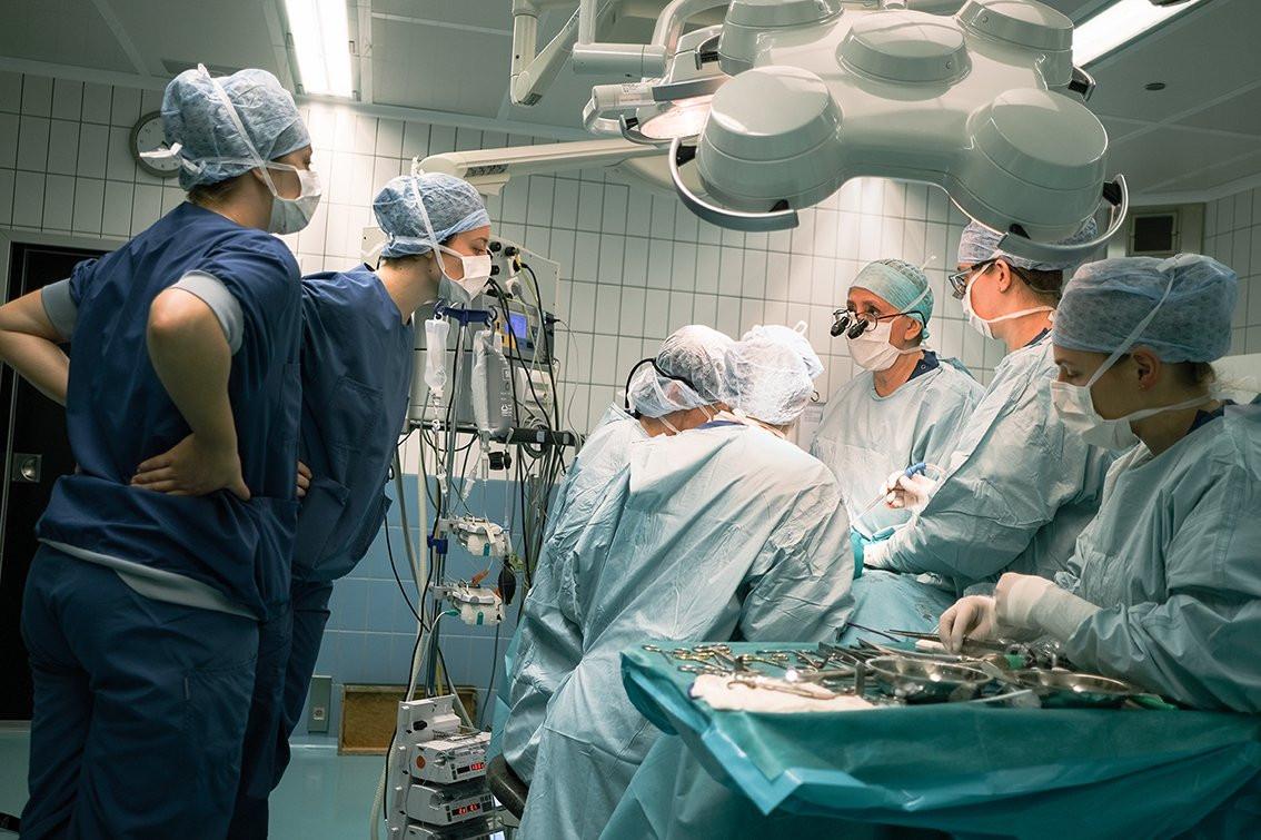 Beelden van de operatie op bulldog Life. Links op de foto kijken twee studenten diergeneeskunde geïnteresseerd en nieuwsgierig mee.