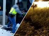 Vier Nederlanders die internationale drugsbende leidden opgepakt in Spanje