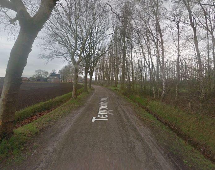 De Tervoortseweg in Bavel.