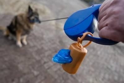 Vlaardings baasje moet hondenpoep opruimen