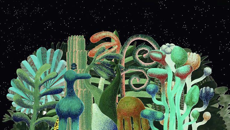 Still uit de film Artis leeft, over het leven van dieren én mensen Beeld Artis