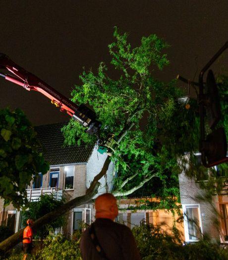 Noodweer in Brabant: wateroverlast, omgewaaide bomen en woningen geraakt door bliksem