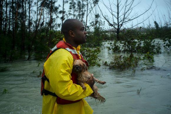 Een vrijwilliger met een geredde hond in het overstroomde Freeport.
