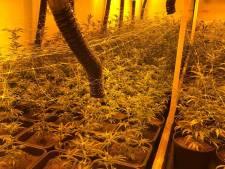 1000 hennepplanten gevonden in Arnhemse loods, pand  op slot