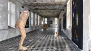 'Mirrors of Time': dertig jaar kunst in Oud-Rekem
