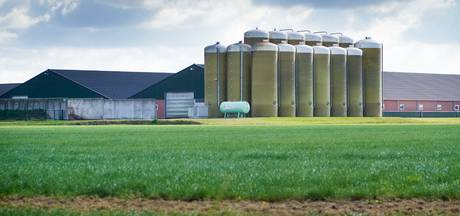 GroenLinks kritisch op Boekelse varkensboer: 'Er zijn veel zaken illegaal'