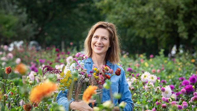 Maak je eigen boeket van gedroogde bloemen en spaar tot 50 euro: onze tuinexperte legt uit hoe je het maakt