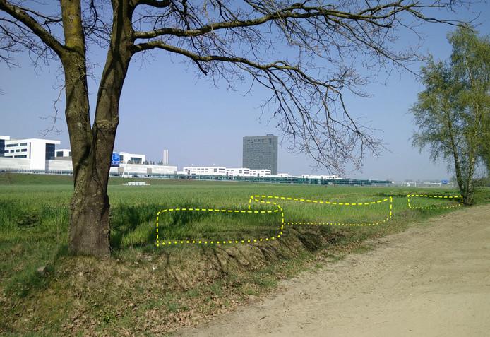 Impressie waar de gevlochten heg gaat komen (De Run), met op de achtergrond ASML in Veldhoven.