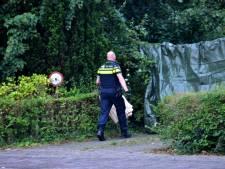 Geen noodweer: twaalf jaar cel voor Roemeen na fataal schot Chaam