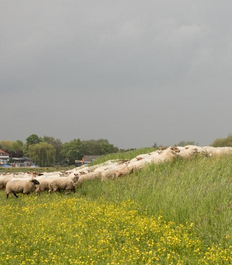 Herenboeren in Soest kunnen aan de slag, maar zoeken zich 'kleurenblind' naar stuk grond