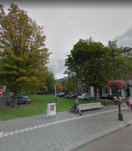 Parkstraat krijgt nieuwe bomen en kwart minder parkeerplekken