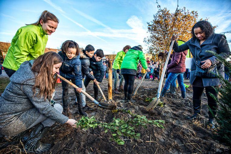 De eerste hand wordt gelegd aan de Tiny Forrest op het schoolplein van Basisschool de Optimist in Almere.  Beeld Raymond Rutting / de Volkskrant