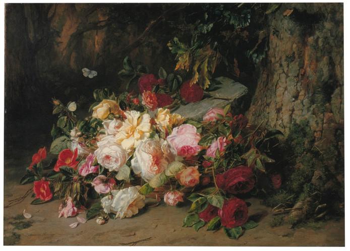 Julij rozen van Adriana Haanen.