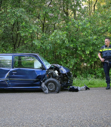 Automobiliste rijdt tegen twee bomen in Hapert