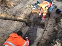 Een van de skeletten wordt donderdagmorgen opgegraven.