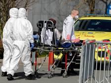"""""""Covid19stop"""", une cartographie de l'évolution de la pandémie en Belgique"""