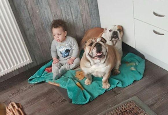 Max en Maxime waren hele lieve honden.