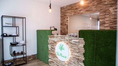 Eerste Limburgse cannabiswinkel opent in Hasselt, burgemeester Vandeput (N-VA) niet blij