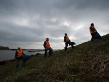 Waaljutters op pad in Rijnwaarden