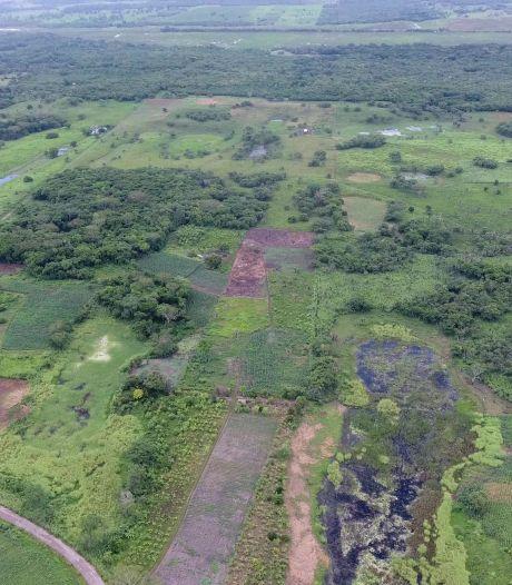 Incroyable découverte au Mexique: le plus vieux et plus grand complexe maya dévoile ses secrets