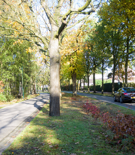 Uitspraak Raad van State over bezwaren tegen randweg Heeze komt later