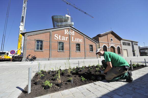 Het Red Star Line Museum is volgens CNN ook een van de smaakmakers van de stad.