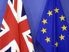 'Westland rijkelijk laat begonnen met voorbereiden op brexit'