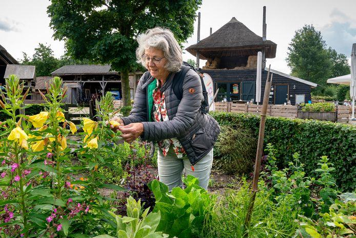 Rea Vonk (67) uit Schijndel is IVN-gids en raakt niet uitverteld over Schaapskooi Schijndel.