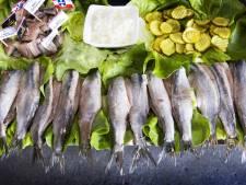 Uden verloot twee plekken voor verkoop van vis