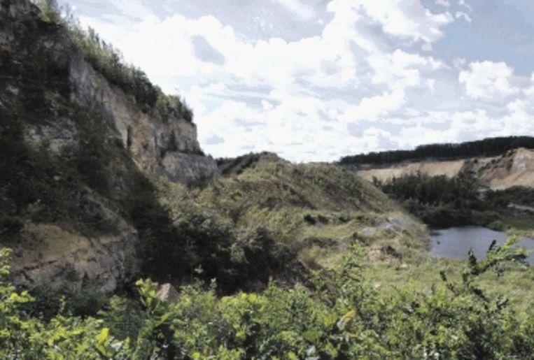 De Oehoevallei is alleen onder begeleiding toegankelijk. (Trouw) Beeld