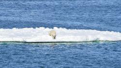 Hoeveelheid noordpoolijs bereikt nieuw dieptepunt voor januari