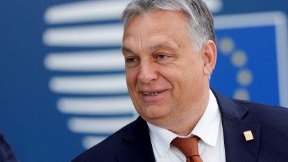 EU-leiders bang dat Viktor Orban nieuw uitstel voor brexit tegenhoudt