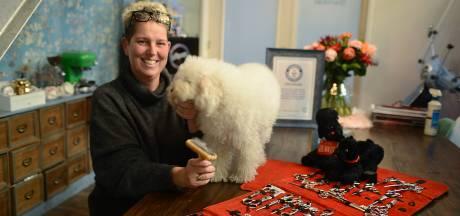 Hoe het Guinness World Record honden wassen van Mirjam een ander mens maakte: 'Het geeft je meer zelfvertrouwen'