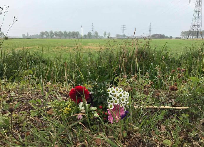 Bloemen op de plek waar Loes overleed.