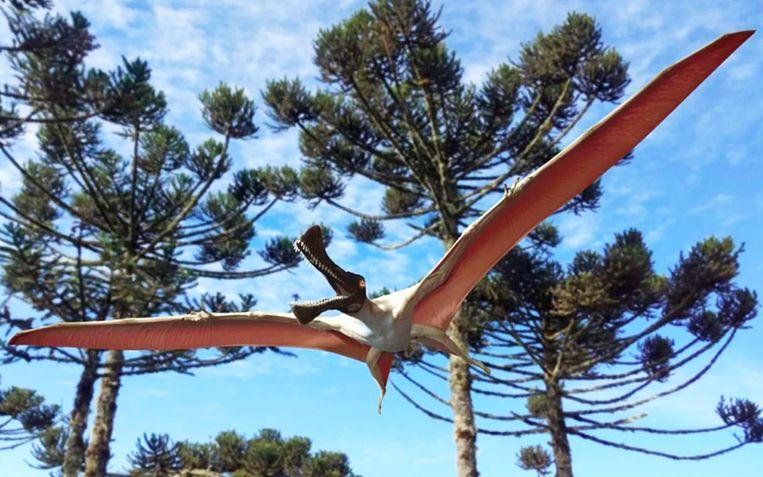 De nieuwe soort pterosaurus kreeg de naam 'Ferrodraco lentoni' - naar de Latijnse woorden ferrum voor ijzer, draco voor draak.