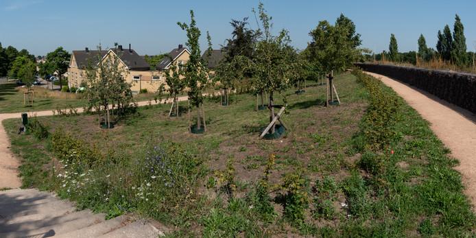 Aan de voet van de geluidswal langs de A1 is onder meer een boomgaard aangelegd.