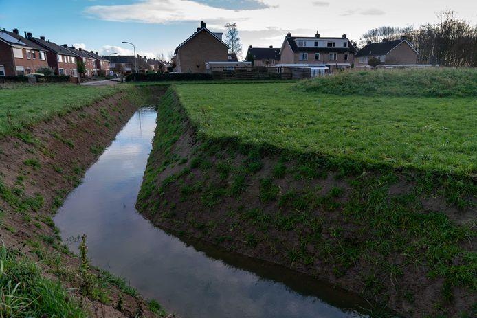 Het weiland tussen de kop van de Burgemeester Lewe van Aduardstraat en het Zettense pad is de beoogde locatie voor een nieuwe begraafplaats in Zetten.