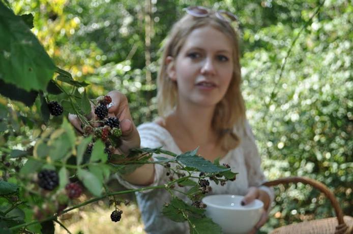 De Midzomer Foodwalk leidt door het Reestdal in Balkbrug waar eetbare planten groeien.