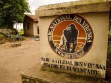 Au moins 12 rangers du parc des Virunga tués dans une attaque