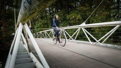 Twee fietsbruggen in Evergem: één over Ringvaart en één over R4