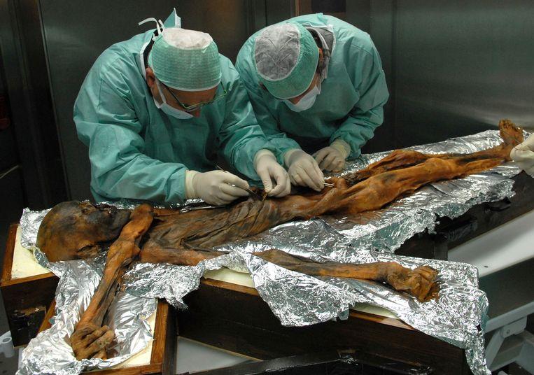 Italiaanse wetenschappers onderzoeken het lichaam van Ötzi de IJsman. De gevonden maaginhoud geeft een goed beeld van wat vroegere Europeanen zo'n vijfduizend jaar geleden aten.