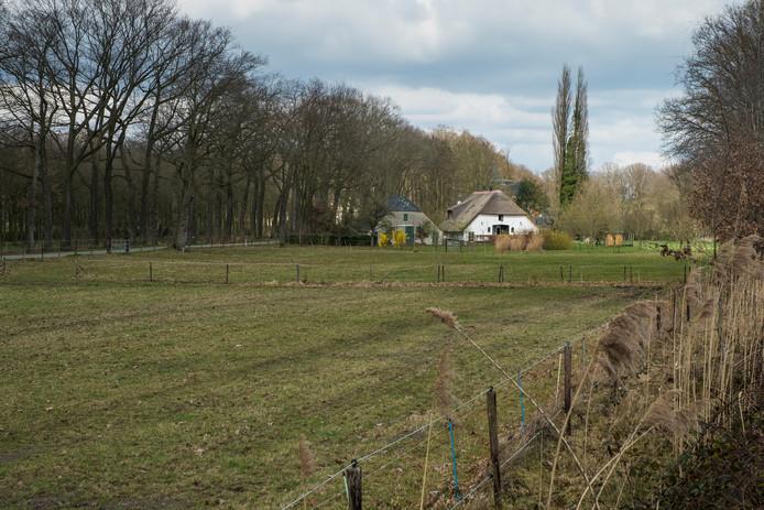 Het gebied in Heerde waar het zonnepark moet verrijzen.