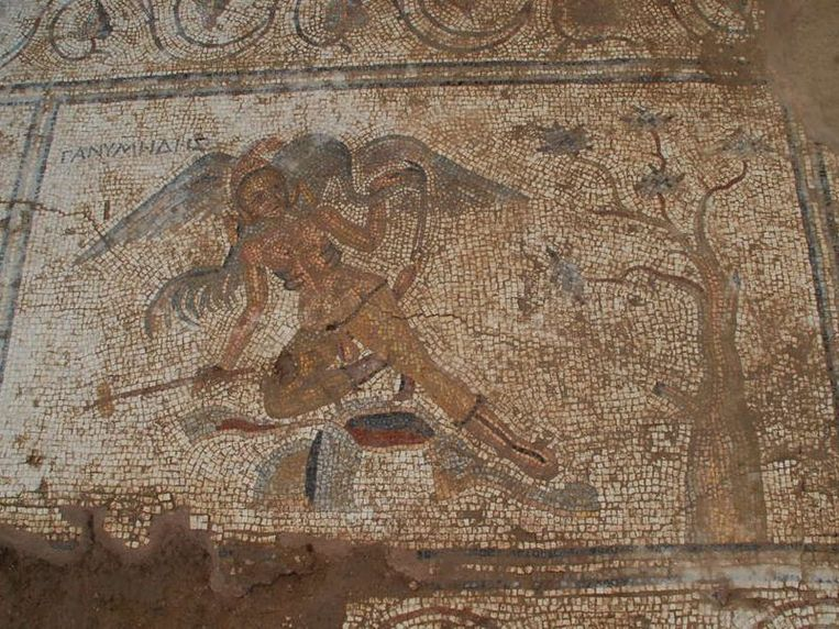 De reiger zou de god Zeus voorstellen die met zijn bek naar het geslachtsorgaan van Ganymedes reikt.